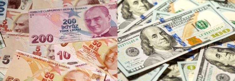 Валютная пара USD/TRY: особенности и факторы влияния