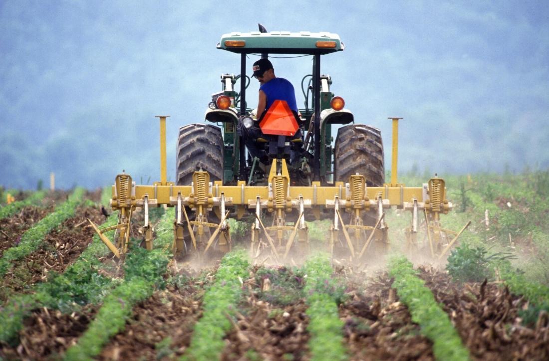 cfd-контракты на сельскохозяйственные продукты
